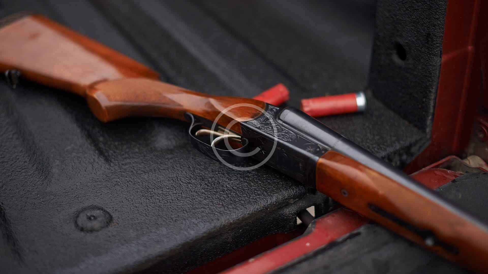 PANZER ARMS AR-12 SHOTGUN